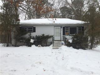 59  Newcomb Trl  , Ridge, NY 11961 (MLS #2742432) :: RE/MAX Wittney Estates