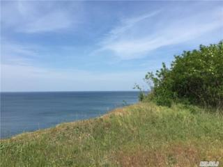 16  Cold Spring Dr  , Sound Beach, NY 11789 (MLS #2766630) :: RE/MAX Wittney Estates