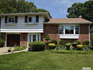 19  Joan Ln  , Massapequa Park, NY 11762 (MLS #2666653) :: Carrington Real Estate Services