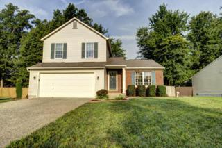 11202  Fox Meade Rd.  , Louisville, KY 40299 (#1399839) :: Team Panella