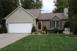 6003  Carmelwood Dr  , Louisville, KY 40229 (#1403616) :: Dream J.P. Pirtle Realtors