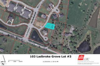 103  Ladbroke Grove Rd  , Louisville, KY 40245 (#1405940) :: Dream J.P. Pirtle Realtors