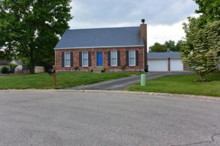 603  Stivers Rd  , Louisville, KY 40207 (#1419509) :: Team Panella