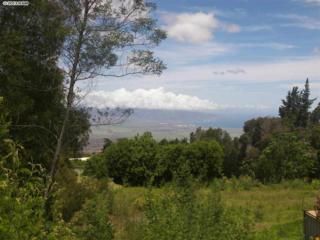 0  Haleakala Hwy (Crater Rd)  Lot 21-C Haleak, Kula, HI 96790 (MLS #357218) :: Elite Pacific Properties LLC