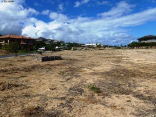91  Keoneloa St  61, Wailuku, HI 96793 (MLS #358157) :: Elite Pacific Properties LLC