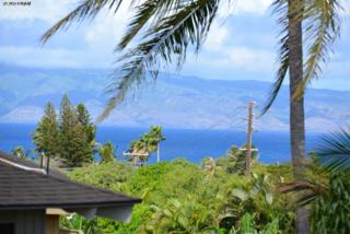 91 A  Hui Rd F  A, Lahaina, HI 96761 (MLS #358192) :: Elite Pacific Properties LLC