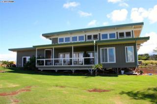 110  Ulua Pl  , Haiku, HI 96708 (MLS #358833) :: Elite Pacific Properties LLC