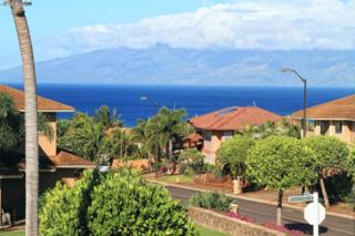 22  Kahana Ridge Dr  , Lahaina, HI 96761 (MLS #358907) :: Elite Pacific Properties LLC