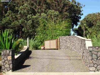 500  Ulumalu Rd  , Haiku, HI 96708 (MLS #359377) :: Elite Pacific Properties LLC