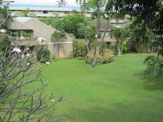 4440  Lower Honoapiilani Rd  243, Lahaina, HI 96761 (MLS #359529) :: Elite Pacific Properties LLC