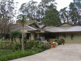 17671  Haleakala Hwy  , Kula, HI 96790 (MLS #359594) :: Elite Pacific Properties LLC