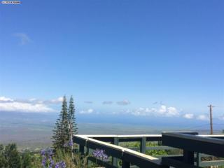 1280  Middle Rd  , Kula, HI 96790 (MLS #360053) :: Elite Pacific Properties LLC