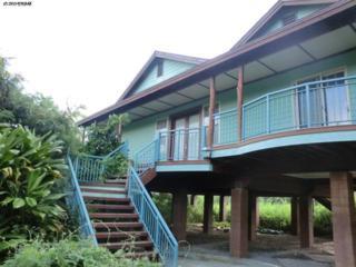 8330  Kamehameha V Hwy  , Molokai, HI 96748 (MLS #360841) :: Elite Pacific Properties LLC