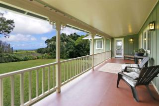 700  Pakanu St  , Haiku, HI 96708 (MLS #360843) :: Elite Pacific Properties LLC