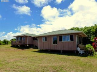 434  Hoolawa Rd  , Haiku, HI 96708 (MLS #361012) :: Elite Pacific Properties LLC