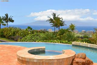 17 E Mahi Pua Pl  Lot 2, Lahaina, HI 96761 (MLS #361234) :: Elite Pacific Properties LLC