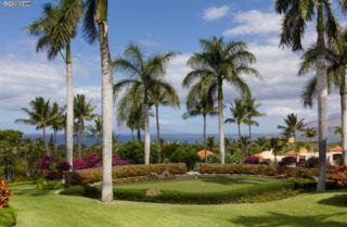 3150  Wailea Alanui Dr  3202, Kihei, HI 96753 (MLS #361354) :: Elite Pacific Properties LLC