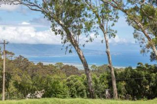 1050  Piiholo Rd  Lot 1-B, Makawao, HI 96768 (MLS #361485) :: Elite Pacific Properties LLC