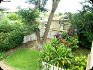 140  Uwapo Rd  27-206, Kihei, HI 96753 (MLS #361526) :: Elite Pacific Properties LLC