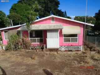 334  Kokio St  , Molokai, HI 96748 (MLS #361660) :: Elite Pacific Properties LLC