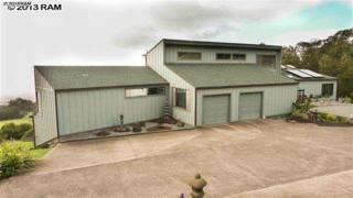17085  Haleakala Hwy  , Kula, HI 96790 (MLS #361733) :: Elite Pacific Properties LLC