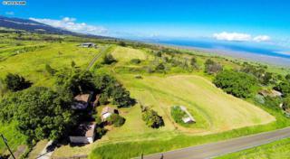 303  Naalae Rd  , Kula, HI 96790 (MLS #361753) :: Elite Pacific Properties LLC