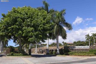 393  Kualono Pl  , Kihei, HI 96753 (MLS #361819) :: Elite Pacific Properties LLC