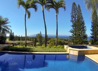 338  Cook Pine Dr  , Lahaina, HI 96761 (MLS #361861) :: Elite Pacific Properties LLC