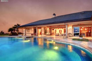 222  Keoawa St  Lot 17, Lahaina, HI 96761 (MLS #361876) :: Elite Pacific Properties LLC