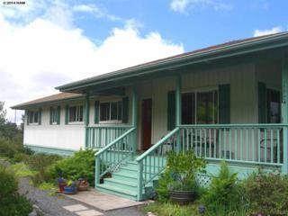 17774  Haleakala Hwy  , Kula, HI 96790 (MLS #361939) :: Elite Pacific Properties LLC