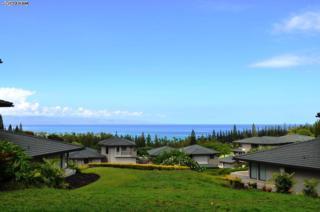 500  Kapalua Dr  22T2, Lahaina, HI 96761 (MLS #361955) :: Elite Pacific Properties LLC