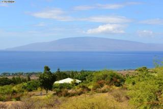135  Paia Pohaku St  18-A, Lahaina, HI 96761 (MLS #361975) :: Elite Pacific Properties LLC