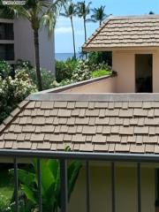 2495 S Kihei Rd  367, Kihei, HI 96753 (MLS #362091) :: Elite Pacific Properties LLC