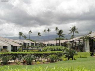 2737 S Kihei Rd  124, Kihei, HI 96753 (MLS #362092) :: Elite Pacific Properties LLC