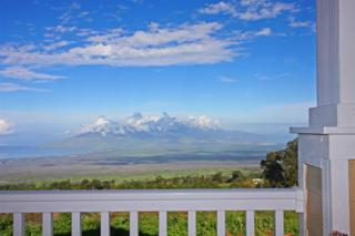 890  Waipoli Rd  , Kula, HI 96790 (MLS #362289) :: Elite Pacific Properties LLC