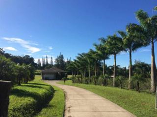 90  Kaupakalua Rd  , Haiku, HI 96708 (MLS #362310) :: Elite Pacific Properties LLC