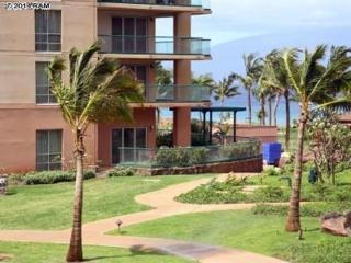 130  Kai Malina Pkwy  206, Lahaina, HI 96761 (MLS #362441) :: Elite Pacific Properties LLC