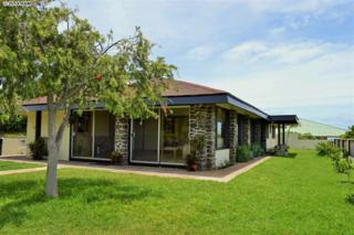 253 A  Leleihoku St  , Wailuku, HI 96793 (MLS #362460) :: Elite Pacific Properties LLC