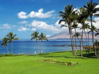 3300  Wailea Alanui Dr  37C, Kihei, HI 96753 (MLS #362462) :: Elite Pacific Properties LLC