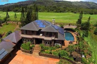 156  Kaunaoa Dr  , Lanai, HI 96763 (MLS #362546) :: Elite Pacific Properties LLC