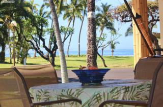 185  Pualei Dr  185-3, Lahaina, HI 96761 (MLS #362567) :: Elite Pacific Properties LLC
