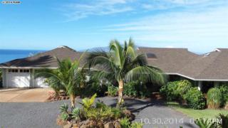 26  Huapala Pl  , Lahaina, HI 96761 (MLS #362573) :: Elite Pacific Properties LLC