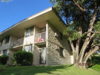2895 S Kihei Rd  101, Kihei, HI 96753 (MLS #362730) :: Elite Pacific Properties LLC