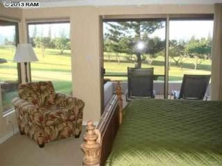 500  Kapalua Dr  14P12, Lahaina, HI 96761 (MLS #362783) :: Elite Pacific Properties LLC