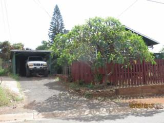 204  Akeke Pl  , Lahaina, HI 96761 (MLS #362804) :: Elite Pacific Properties LLC