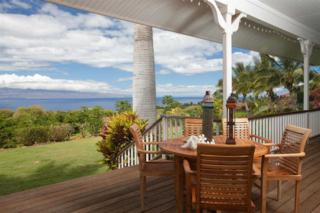 15  Wailau Pl  Unit A, Lahaina, HI 96761 (MLS #362815) :: Elite Pacific Properties LLC