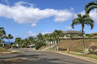 3377 E Lani Ikena Way  , Kihei, HI 96753 (MLS #362839) :: Elite Pacific Properties LLC