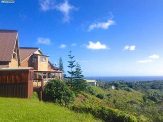 51 S Honokala Rd  , Haiku, HI 96708 (MLS #362843) :: Elite Pacific Properties LLC