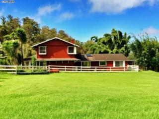 1242  Ehu Rd  1, Makawao, HI 96768 (MLS #362846) :: Elite Pacific Properties LLC