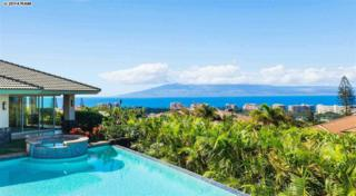 45 W Mahi Pua Pl  , Lahaina, HI 96761 (MLS #362908) :: Elite Pacific Properties LLC